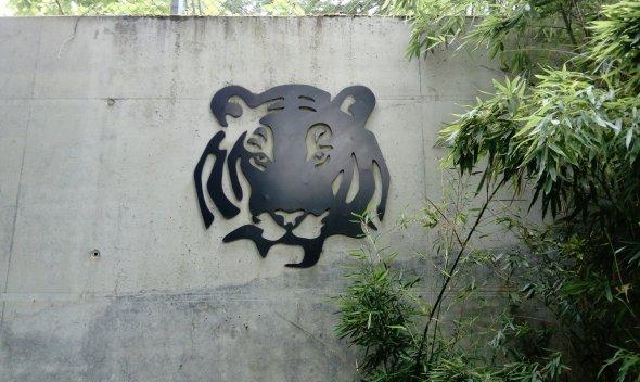 'Ferocious' Tiger Enclosure Frankfurt Zoo - photo credit Nina Wulf